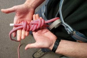 Rock Climbing Blog - Harness